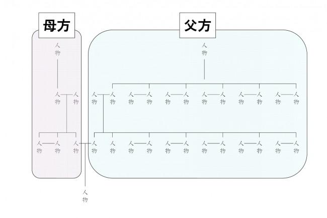 説明図(系統ごとの偏り)